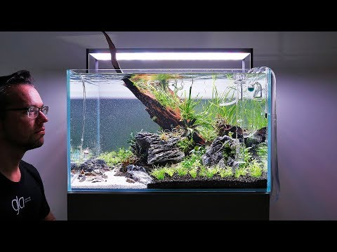 HOW TO set up a Beautiful Nature Aquarium Aquascape