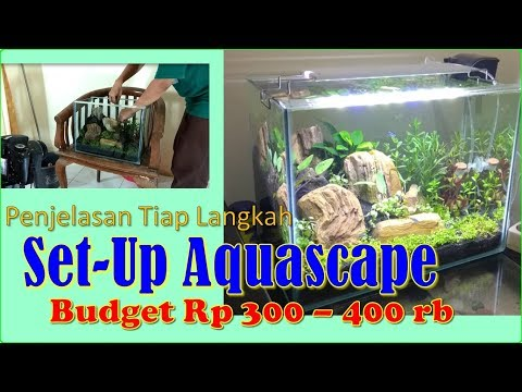 Tutorial Membuat (Set-Up) Aquascape Tema Natural
