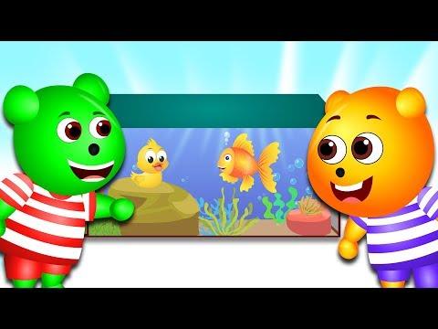 Gummy Bear | New Aquarium for Fish💗 Children's cartoons & Baby Nursery Rhymes