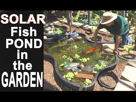 How to build Solar Fish Pond EASY Care Brings Dragonflies in the Garden Backyard