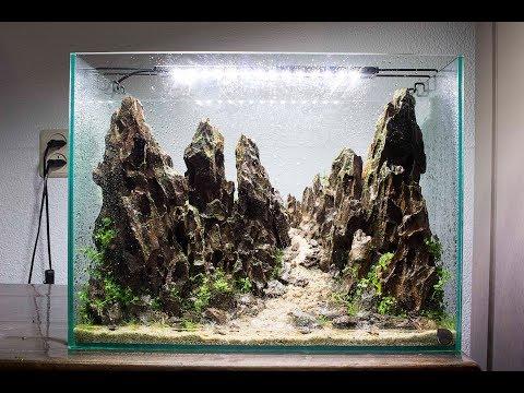 Planting Aquarium Plants – Nano Aquascape – Day 1