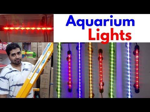 Aquarium Lights Price at Naaz Aquarium Kurla Fish Market
