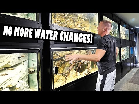 Automatic aquarium water changes