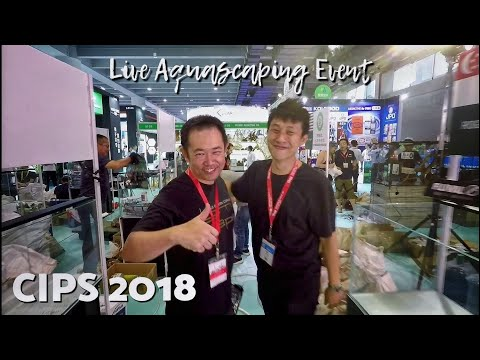 #CIPS2018 #FAAO #Aquascaping CIPS 2018 | Aquarium Dynasty and Live Aquascaping event