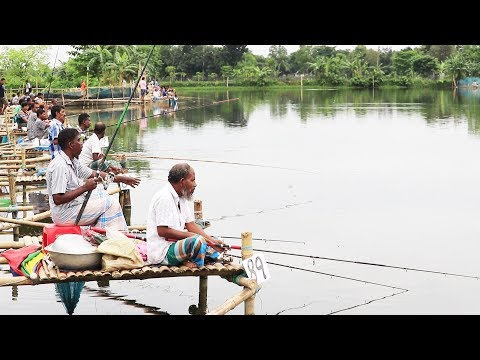 Amazing Fishing Competition From The Pond। Fish Catching By Fishhook