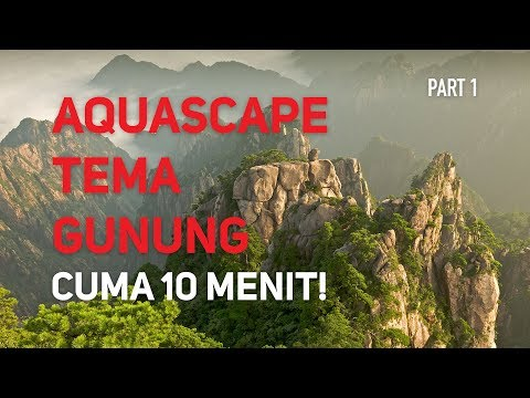 Tutorial Membuat Iwagumi Aquascape dalam 10 menit!