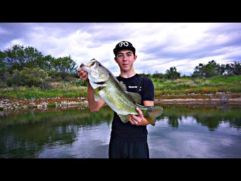 The Pond Monster – Massive Fish!