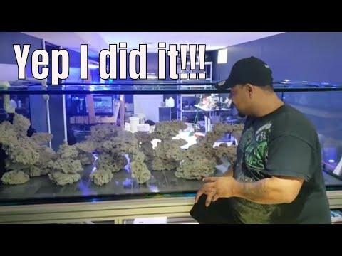 Adding live Sand to reef tank aquarium