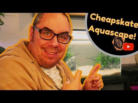 Super cheap aquascape setup! Zero cost planted aquarium!