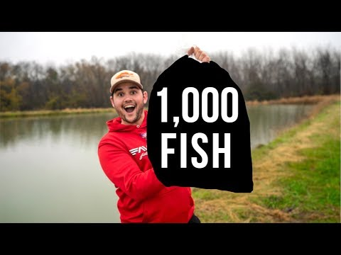 Stocking my Pond with 1,000 FISH!!!!