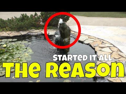 Buying this Made Them Build a 6,000 gallon Garden Koi Pond…