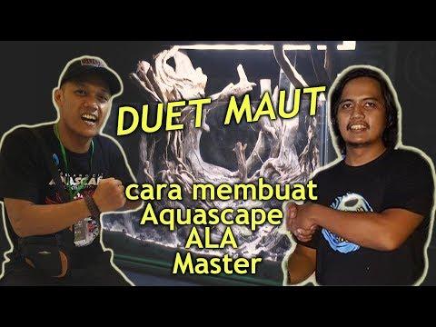 Cara Membuat Hardscape untuk Aquascape – Yogyakarta Aquascape Challenge 2018 – Live Setting