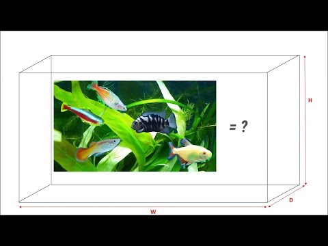 How many fish can I have in my aquarium? How to know your fish tank volume? aquarium calculator