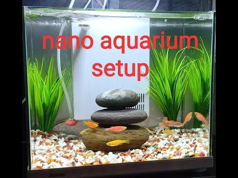 NANO fish aquarium set up 2019