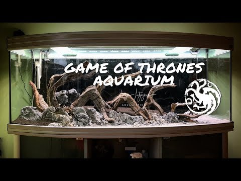 Game of Thrones Aquarium | Aquascaping Step by Step Tutorial – Dragon Aquascape 🐉