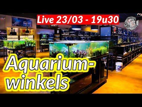 🔴 LIVE: Aquarium winkel – waar jouw aquarium vissen kopen?