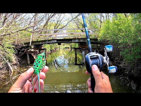 HIDDEN Backwater Pond is LOADED w/ Fish!!