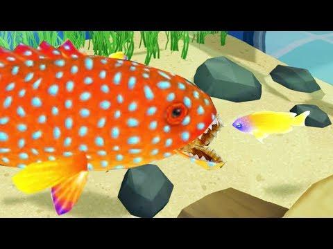 Building a Carnivorous Fish Aquarium – Megaquarium Gameplay