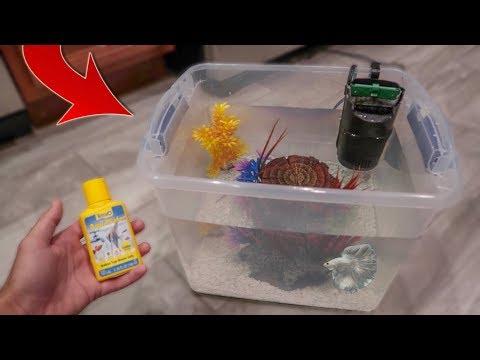 HOMEMADE BETTA FISH AQUARIUM!!!