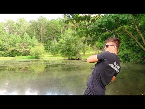 How To Fish Small Ponds – Bass Fishing Tips