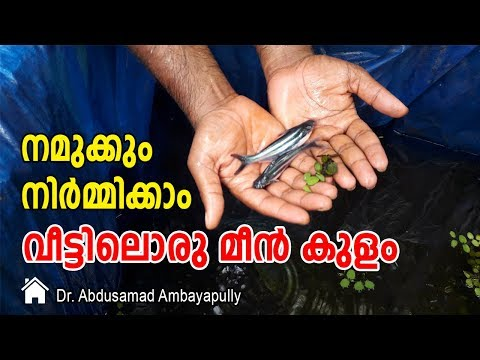 Let's make a fish pond at home | Dr.Abdusamad Ambayappully