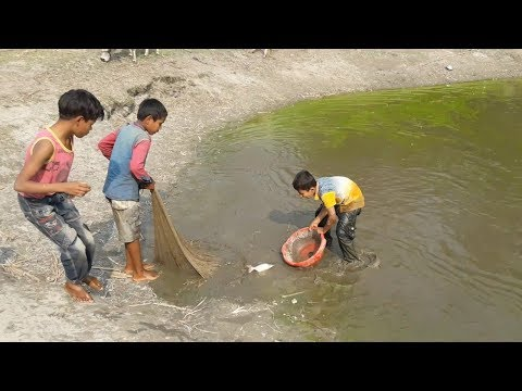 Kids Fishing | Catching fish with Cast Net | Kid's Fishing in Village Pond