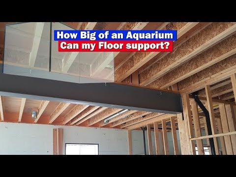 How big of an aquarium will your floor support? Live with an engineer to dive deeper!