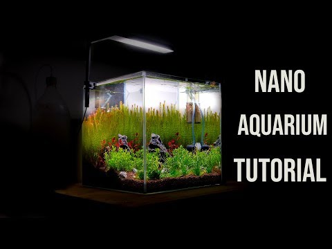 Nano AQUARIUM – AQUASCAPING Tutorial for Beginners