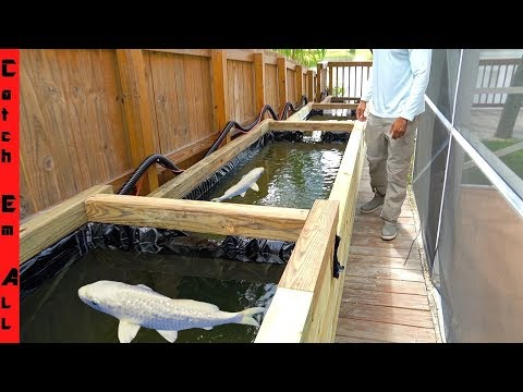 POND BUILD **Multi-Level WOOD FRAME** HOW TO DIY for KOI FISH