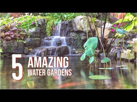 WATER GARDEN TOUR – 5 Incredible Koi Ponds | Fountainscapes