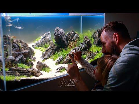 90p Aquascape tutorial – IAPLC 2020 Brazilian Style