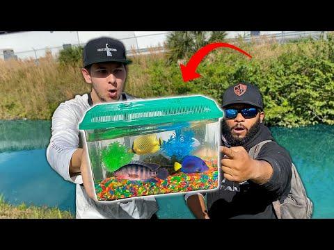Catching NEW PET FISH for AQUARIUM!! (Exotic Fish)