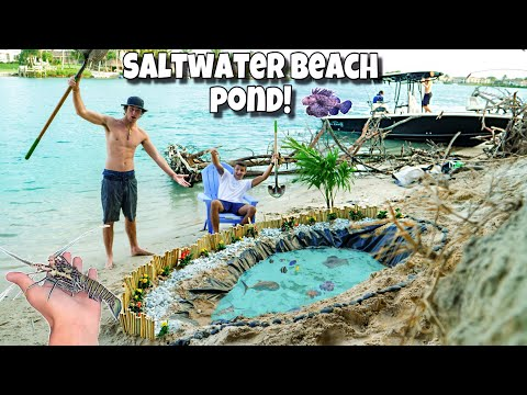 DIY EXOTIC BEACH FISH POND 2!! *Insane*