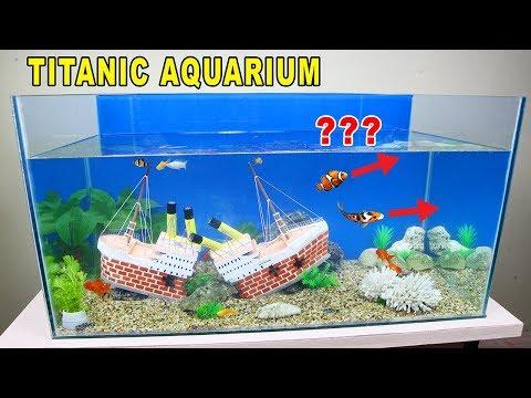 DIY Aquarium Fish Pond for Koi and Goldfish with Mini Bricks