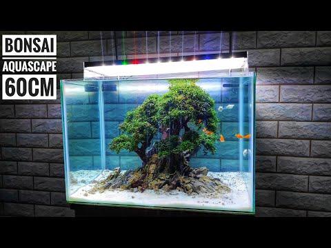 #160 Membuat bonsai Aquascape 60cm model 1