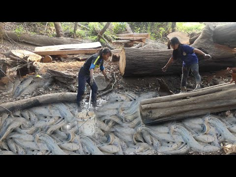 Best Survival Fishing Skills Find And Catch Fish In Secret Dry Pond In Forest