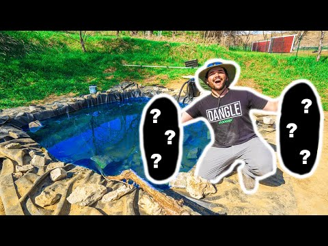 STOCKING My MINI BACKYARD POND with GIANT FISH!!!