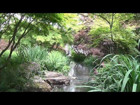 Magical Oriental Water Garden, Arcen, the Netherlands