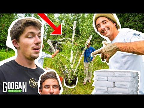 Building HOMEMADE Backyard POND Fish STRUCTURE! ( DIY )
