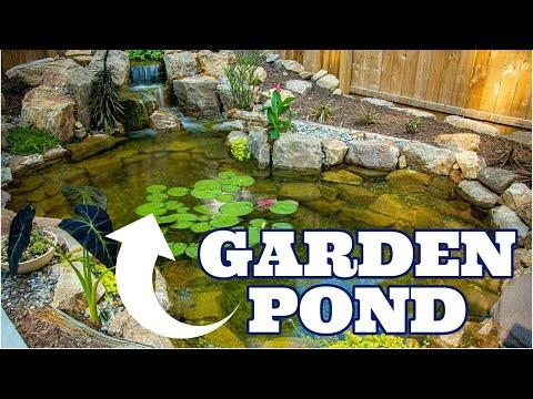 Backyard Garden Pond | Tranquility Deluxe