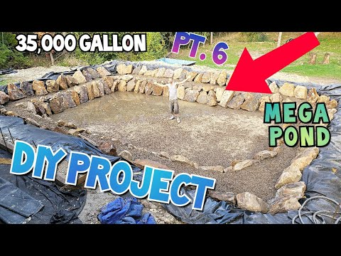Our Favorite DIY Project **35,000+ Gallon Koi Pond** FOR OUR KOI AND BUTTERFLY KOI