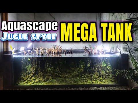 #202 Membuat Aquascape outdoor tema hutan tropis indonesia