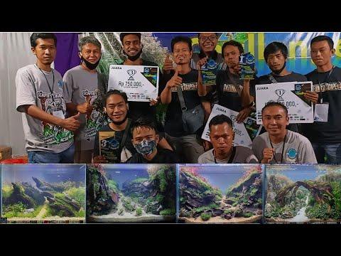 Kontes Aquascape Cikarang – Hasil Quick Setting Contest dan Juaranya
