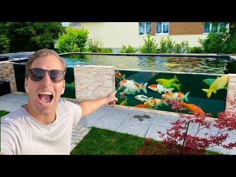 MOST AMAZING KOI POND WITH GLASS | HUGE KOI FISH!!