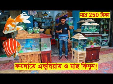কমদামে একুরিয়াম ও মাছ কিনুন  🐠🔥ঢাকা কাটাবন Aquarium & Fish Market || FahimVlogs