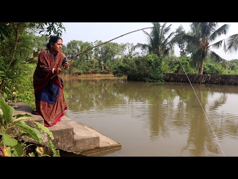 Village Pond Fish Fishing and Village Style Cooking.  Fish Fishing in Pond