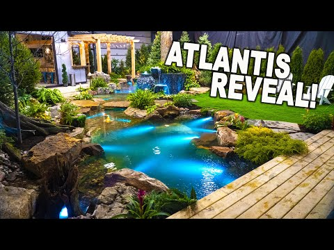 *CUSTOM INDOOR POND REVEAL* from Atlantis Water Gardens