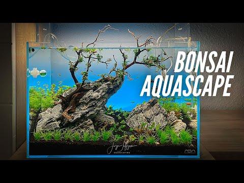 BONSAI AQUASCAPE with Bucephalandra – ADA 45p Aquascaping Tutorial