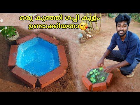 Bricks Fish pond making Malayalam|guppy pond making|Simple aquarium|Cement craft