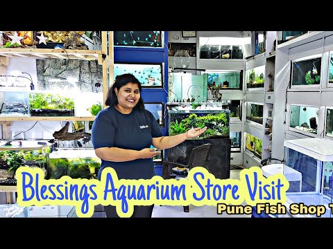 Blessings Aquarium fish shop visit Pune